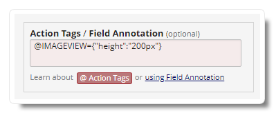 Image Viewer Action Tag